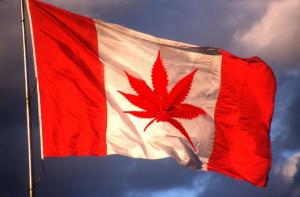 Canada Will Legalize the Recreational Use of Marijuana