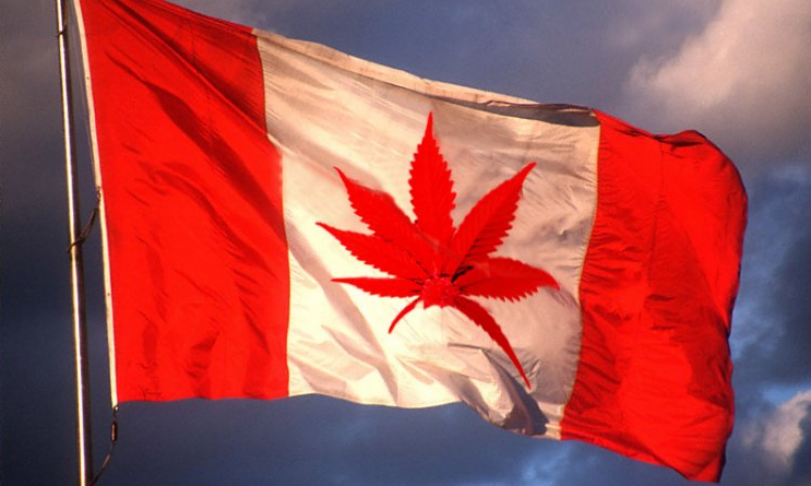 Canada Will Legalize Marijuana