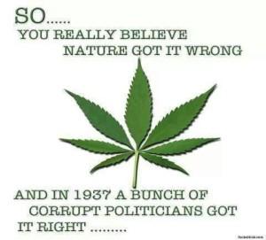 Corrupt Politians Got it Right?
